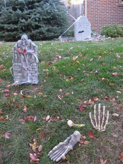 Halloween 2010 (13) (Custom)